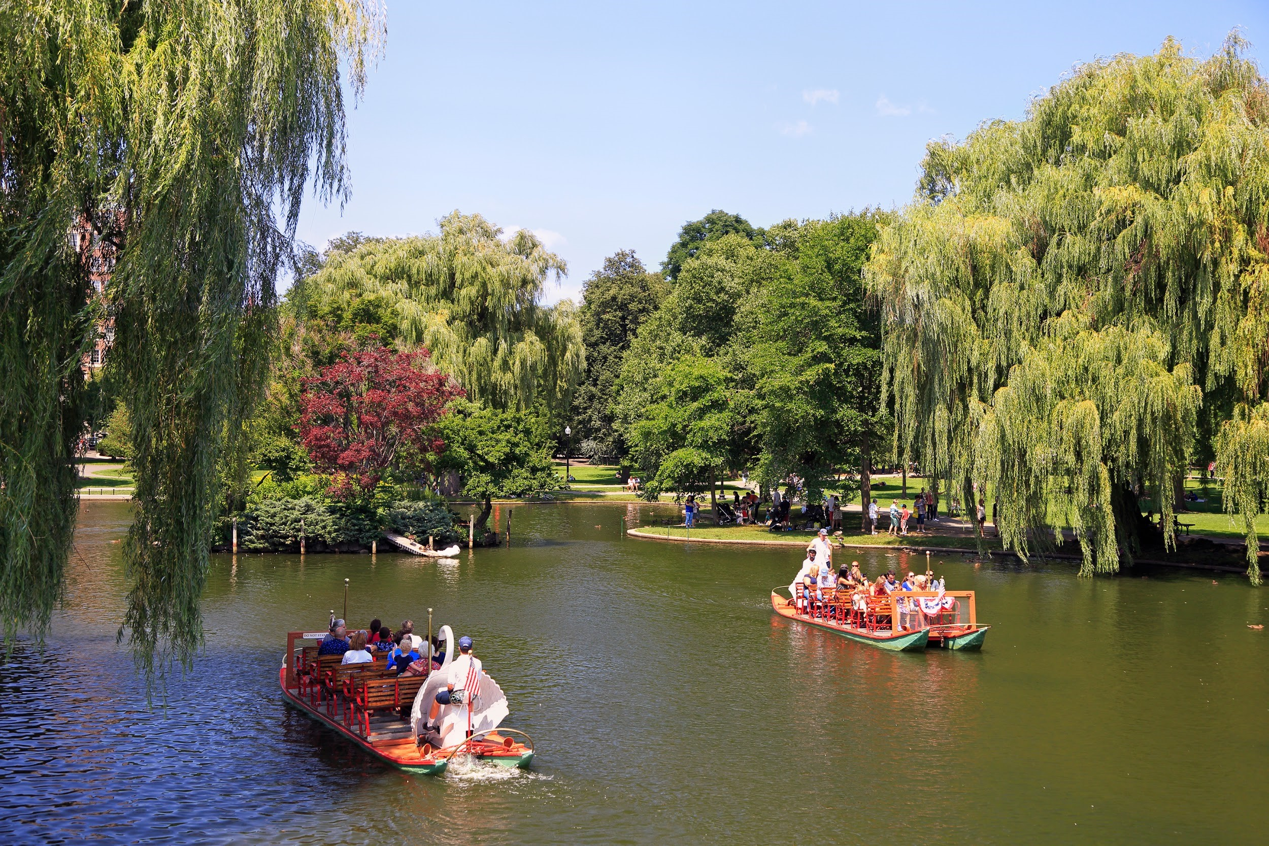 Take a swan ride in Boston Public Garden on a beautiful summer day.